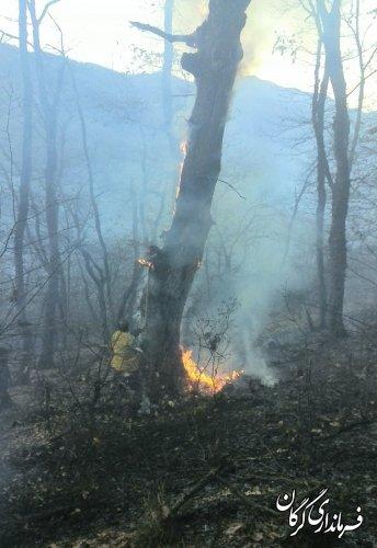آتش سوزی منطقه لرخاک باغ گلبن مهار شد