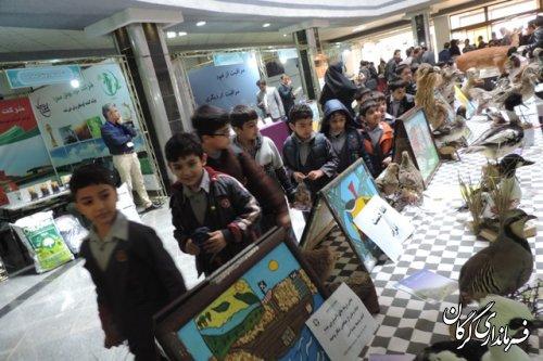 برپایی نمایشگاه به مناسبت روز جهانی حیات وحش