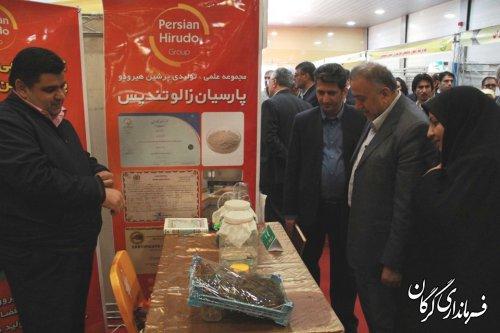 جشنواره بزرگ طبخ و عرضه آبزیان همراه با کارگاه های آموزشی در گرگان افتتاح شد