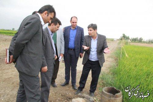 بازدید فرماندار شهرستان گرگان از طرح زهکشی زیرزمینی در روستای کریم آباد