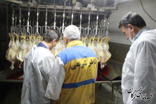 بازدید فرماندار به همراه اعضای جلسه تنظیم بازار شهرستان از کشتارگاه طیور در گرگان