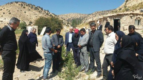 کاشت زعفران و گل محمدی در دستور کار روستاهای کوهپایه ای شهرستان گرگان قرار می گیرد