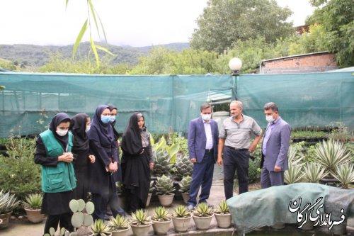 بازدید فرماندار گرگان از گلخانه ۲بانوی موفق در زمینه پرورش گل کاکتوس و گیاهان دارویی