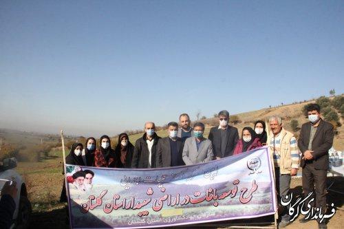 اختصاص ١٠٠ هکتار از اراضی شیب دار شهرستان گرگان به کشت درختان مثمر